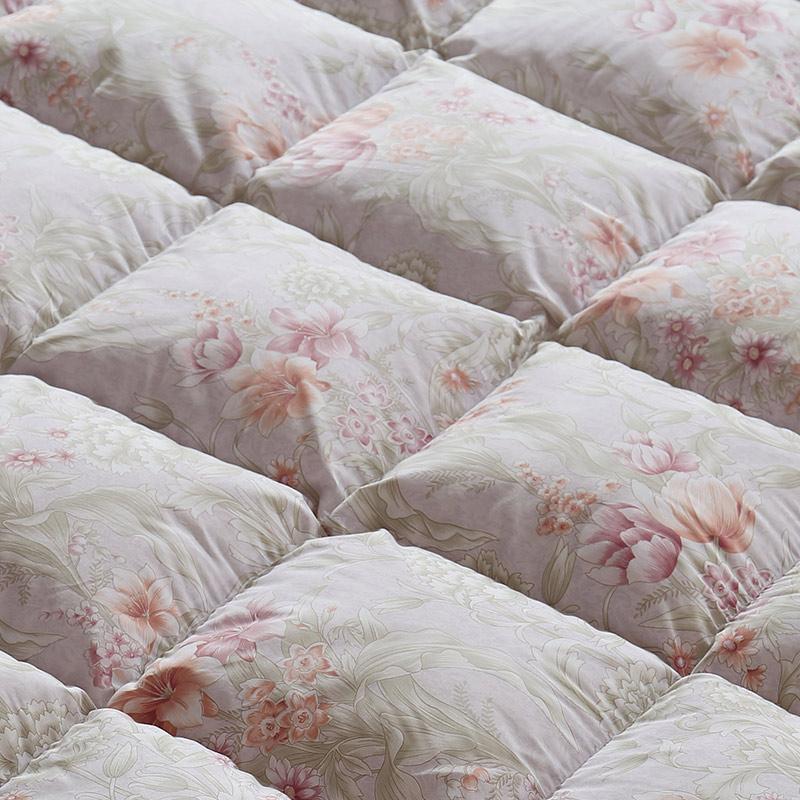 水星家纺 暖寐抗菌鹅绒被芯 95%白鹅绒羽绒被 保暖被子 床上用品加大双人被子220*240cm