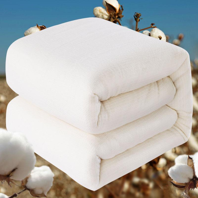 迎馨 被子家紡 新疆棉花被 純棉春秋被四季棉被芯棉花胎 5斤雙人加厚保暖被子被褥春秋被芯棉胎200*230cm